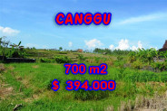 Exceptional Property in Bali, land in Canggu Bali for sale – 650 m2 @ $ 606