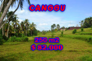 Land for sale in Bali, Unbelievable view in Canggu Bali – 250 sqm @ $ 328