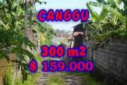 Exotic Property for sale in Bali, Land in Canggu for sale– 300 m2 @ $ 528