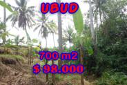 Astonishing Property in Bali, Land for sale in Ubud Bali – 700 m2 @ $ 139