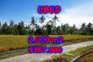 Land for sale in Bali, Spectacular view in Ubud Bali – 2.000 m2 @ $ 133