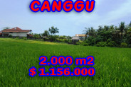 Land for sale in Bali, Fantastic view in Canggu Bali – 2.000 m2 @ $ 578