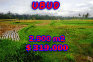Land for sale in Bali, Exotic view in Ubud Bali – 2.900 sqm @ $ 110