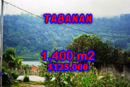 Excellent property in Bali, land for sale in Tabanan Bali – TJTB062