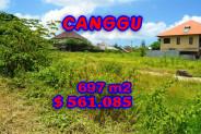 Astonishing Property in Bali, Land for sale in Canggu Bali – 697 m2 @ $ 806
