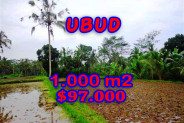 Land in Bali for sale, Eye-catching view in Ubud Bali – 1.000 sqm @ $ 97