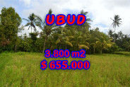 Amazing Property in Bali, land for sale in Ubud – TJUB271