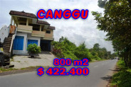 Attractive Property for sale in Bali, Canggu land for sale – 800 m2 @ $ 528