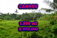 Excellent Property for sale in Bali, land for sale in Canggu Bali  – 1.500 m2 @ $ 383