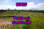 Amazing Property in Bali, Land for sale in Ubud Bali – 7.000 sqm @ $ 294