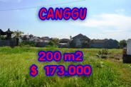 Extraordinary Property in Bali, Land for sale in Canggu Bali – 200 m2 @ $ 861