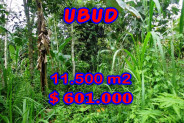 Land in Bali for sale, Excellent Property in Ubud Bali – 11.500 sqm @ $ 52
