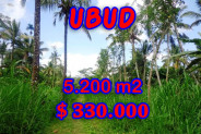 Land for sale Ubud Bali Spectacular view in Ubud Tegalalang – TJUB296
