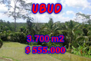 Land for sale in Bali, Exotic view in Ubud Bali – 3,700 sqm @ $ 150