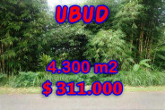 Land for sale in Bali, Extraordinary view in Ubud Bali – 4,300 sqm @ $ 72
