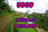 Land in Bali for sale, Exotic view in Ubud Bali – 3,500 sqm @ $ 83