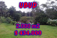 Land for sale in Bali, Unbelievable view in Ubud Bali – 2,000 sqm @ $ 217