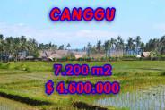 Amazing Property in Bali, Land for sale in Canggu Bali – 7,200 m2 @ $ 639