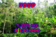 Amazing Property in Bali, Land for sale in Ubud Bali – 1.200 m2 @ $ 110