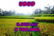 Land for sale in Bali, Incredible property in Ubud Bali – 9.000 m2 @ $ 87