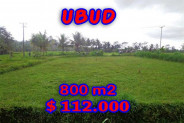 Land for sale in Bali, Outstanding property in Ubud Bali – 800 m2 @ $ 139