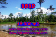 Terrific Property in Bali, Land for sale in Ubud Bali – 18,000 sqm @ $ 83