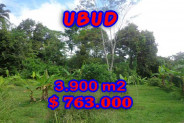 Land for sale in Bali, Spectacular view in Ubud Bali – 3.900 m2 @ $ 196