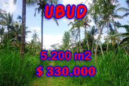 Land for sale in Bali, Spectacular view in Ubud Bali – 5,200 m2 @ $ 63