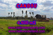 Land for sale in Bali, Extraordinary view in Canggu Bali – 4,600 sqm @ $ 539