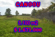 Astounding Property in Bali, land in Canggu Bali for sale – 3,100 m2 @ $ 539