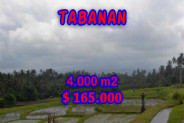Astounding Property in Bali, Land in Tabanan Bali for sale – 4,000 m2 @ $ 41