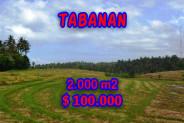 Astounding Property in Bali, Land in Tabanan Bali for sale – 2,000 m2 @ $ 50