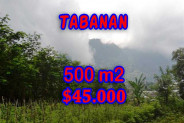 Property in Bali for sale, Beautiful land for sale in Tabanan Bali  – 500 m2 @ $ 89