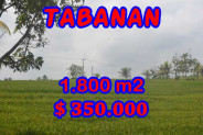 Land for sale in Bali, Spectacular view in Tabanan Bali – 1.800 m2 @ $ 39