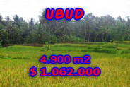 Land for sale in Bali, Incredible view in Ubud Bali – 4.900 m2 @ $ 217