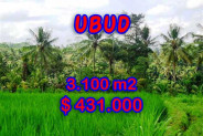 Attractive Property for sale in Bali, Ubud land for sale – 3.100 m2 @ $ 139