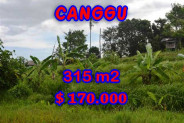 Land for sale in Bali, Interesting view in Canggu Bali – 315 m2 @ $ 539