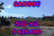 Attractive Property in Bali, Land for sale in Canggu Bali – 500 m2 @ $ 850