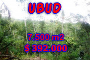 Exceptional Property in Bali, Land in Ubud Bali for sale – 7,500 m2 @ $ 52