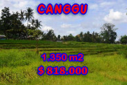 Land for sale in Bali, Outstanding view in Canggu Bali – 1,350 m2 @ $ 606