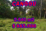 Exotic Property for sale in Bali, Land in Canggu for sale– 2.640 m2 @ $ 250