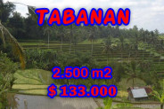 Gorgeous Property in Bali, LAND FOR SALE IN TABANAN Bali – 2.500 m2 @ $ 39