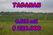 Eye-catching Property in Bali, Land sale in Tabanan Bali – 5.500 m2 @ $ 39