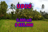 Exotic Property for sale in Bali, Land in Ubud for sale– 3.800 m2 @ $ 172
