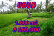 Exotic Property for sale in Bali, Land in Ubud for sale– 1,600 m2 @ $ 106