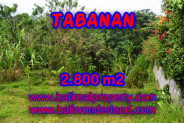 Incredible Property in Bali for sale, land for sale in Tabanan Bali – TJTB070