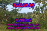 MagnificentLand for sale in Bali, river view in TABANAN BARAT Bali – TJTB072