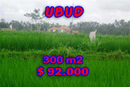 Land in Bali for sale, Stunning Property in Ubud Bali – 300 m2 @ $ 306