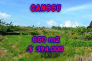 Eye-catching Property in Bali, Land sale in Canggu Bali – 650 m2 @ $ 606