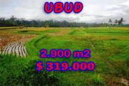 Eye-catching Property in Bali, Land sale in Ubud Bali – 2.900 m2 @ $ 110